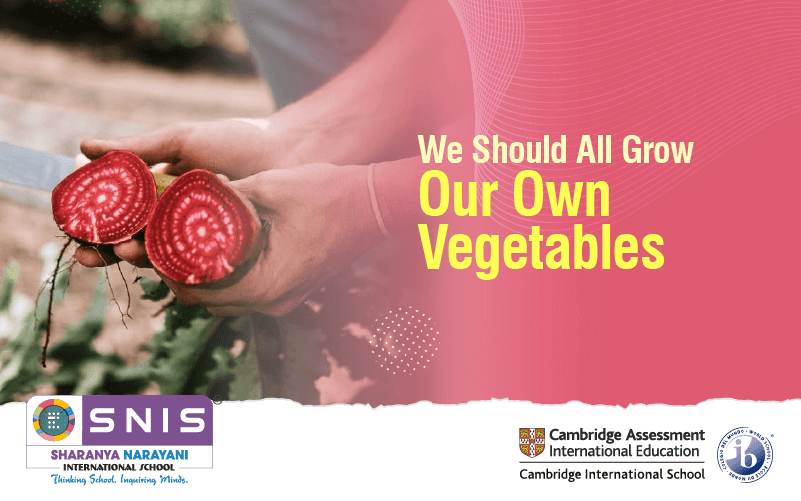 We Should All Grow Our Own Vegetables by Ib schools in bangalore